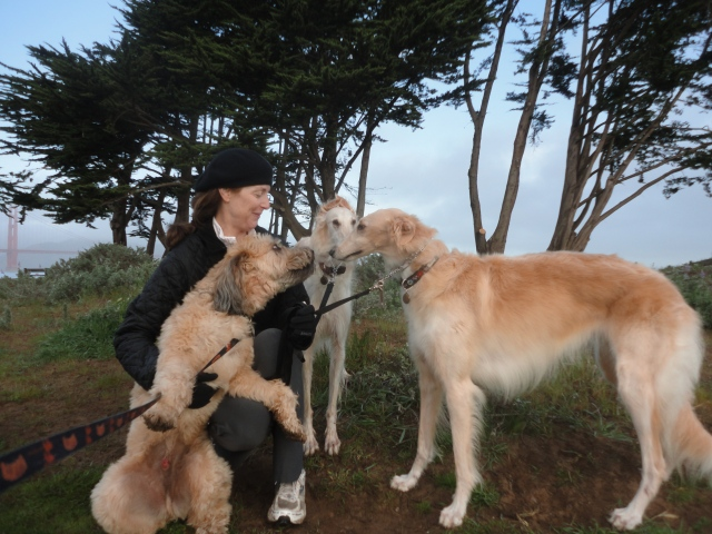 Jodie & her two Russian Wolfhounds, Ann & Mousseline
